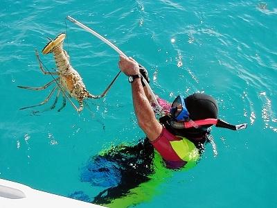 August 2016 information on inshore fishing in bermuda for Fishing in bermuda